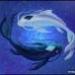 Аватар пользователя Rustam